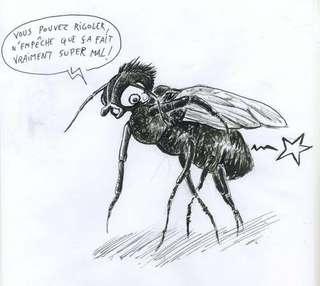 Dans notre langage, l'enculeur n'est que rarement insulté... sauf quand il s'attaque aux mouches.